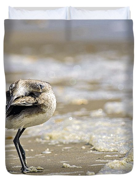 Feather Bed Duvet Cover