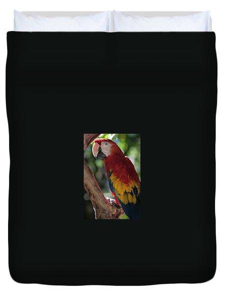 Feathered Rainbow Duvet Cover