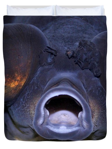 Feed Me Duvet Cover by Linda Sannuti