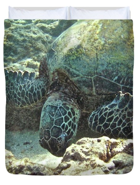 Feeding Sea Turtle Duvet Cover by Michael Peychich