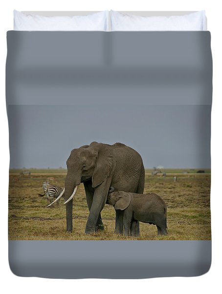 Feeding Time Duvet Cover by Gary Hall