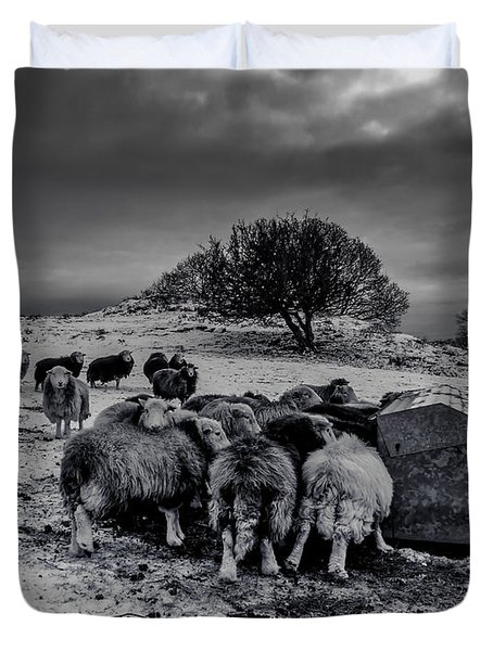 Feeding Time Duvet Cover by Keith Elliott
