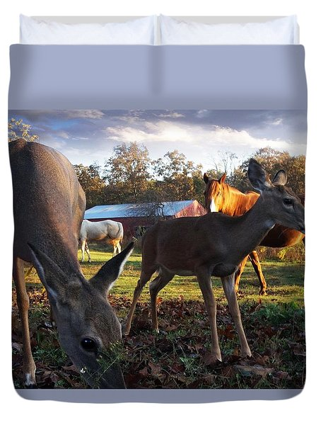 Feeling At Home Duvet Cover by Bill Stephens