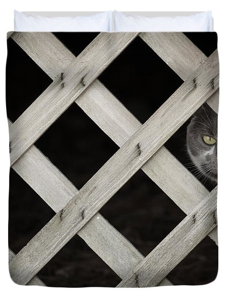 Feline Fence Duvet Cover