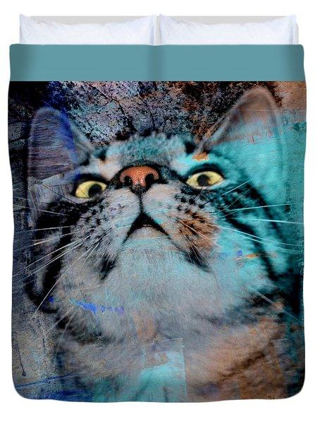 Feline Focus Duvet Cover by Kathy M Krause