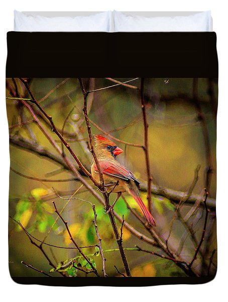 Female Cardinal #1 Duvet Cover