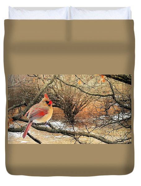 Female Cardinal Caught In The Snow Duvet Cover