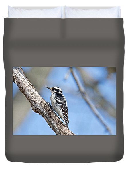 Duvet Cover featuring the photograph Female Downey Woodpecker 1104  by Michael Peychich