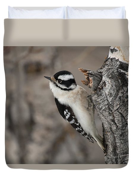 Female Downey Woodpecker Duvet Cover