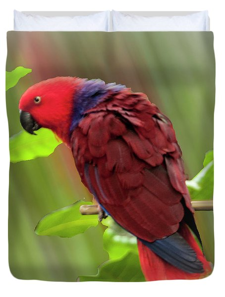 Female Electus Parrot  Duvet Cover