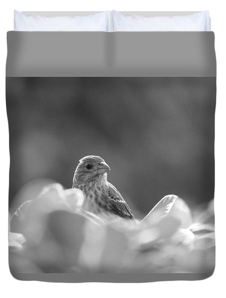 Female House Finch Perched In Black And White Duvet Cover