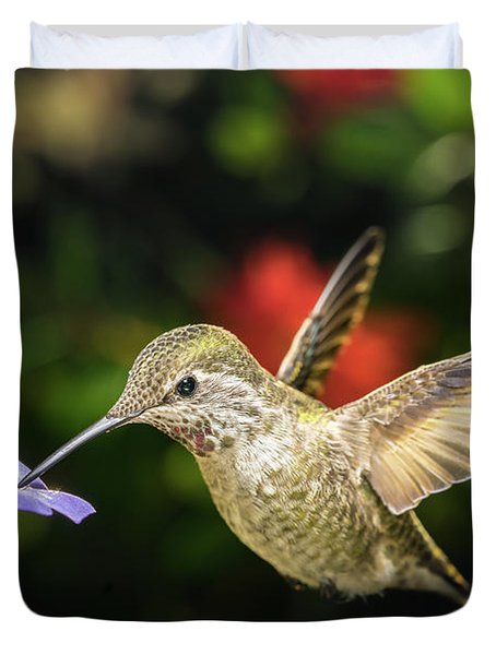 Duvet Cover featuring the photograph Female Hummingbird And A Small Blue Flower Left Angled View by William Lee