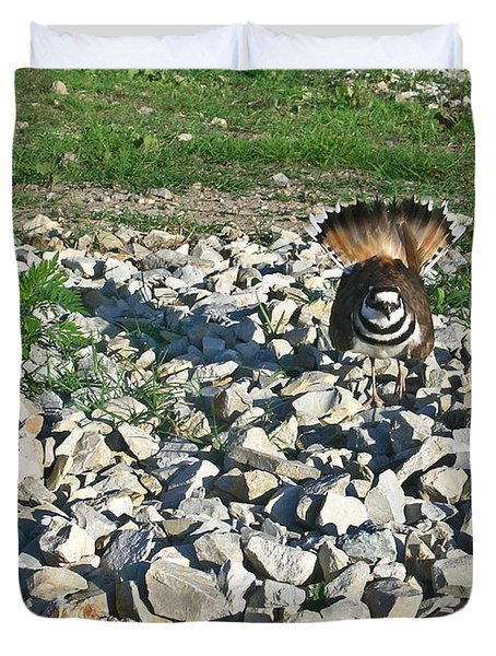 Female Killdeer Protecting Nest Duvet Cover