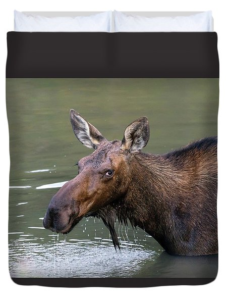 Duvet Cover featuring the photograph Female Moose Head by James BO Insogna