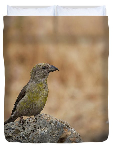 Female Red Crossbill Duvet Cover