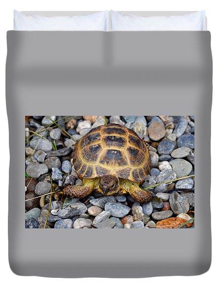 Female Russian Tortoise Duvet Cover