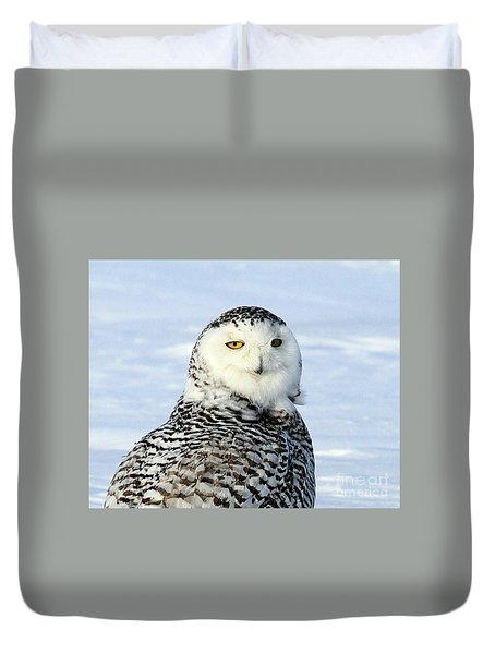 Female Snowy Owl Duvet Cover