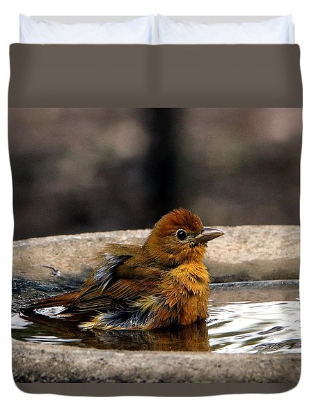 Female Summer Tanager In Bird Bath Duvet Cover