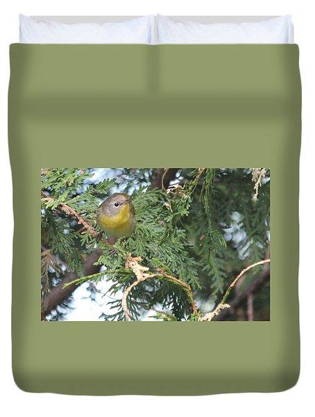 Female Yellowthroat Warbler Duvet Cover