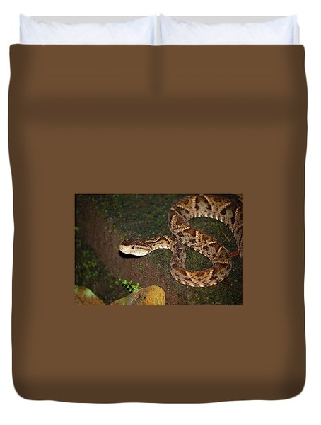 Duvet Cover featuring the photograph Fer-de-lance, Botherops Asper by Breck Bartholomew