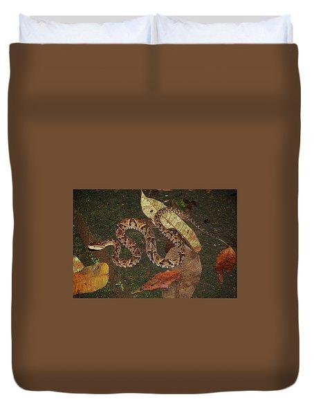 Duvet Cover featuring the photograph Fer-de-lance, Bothrops Asper by Breck Bartholomew