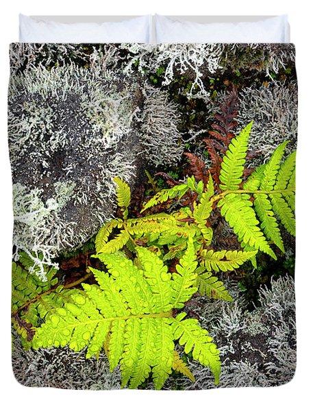 Fern And Lichen Duvet Cover