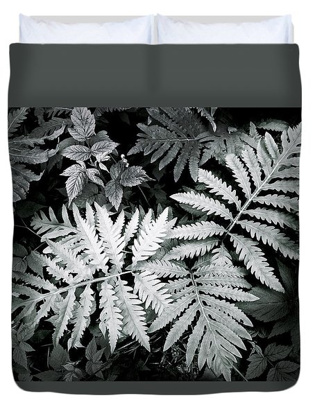 Fern At Bald Rock Duvet Cover