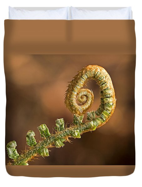 Fern Frond - 365-39 Duvet Cover by Inge Riis McDonald