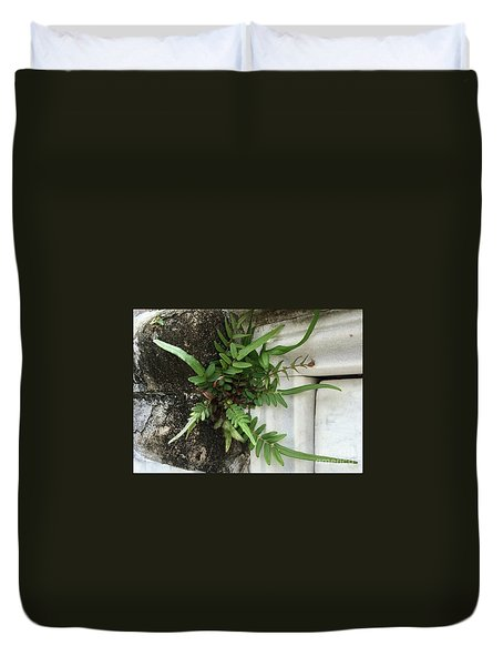 Fern Duvet Cover by Kim Nelson