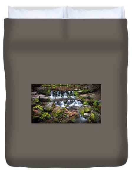 Fern Springs Duvet Cover by Ralph Vazquez