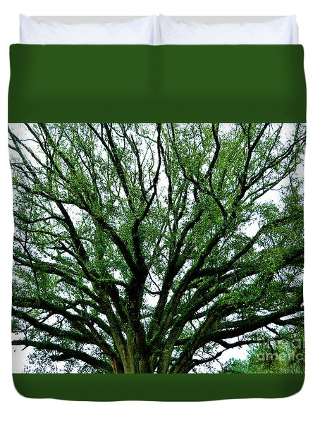 Fern Tree Duvet Cover