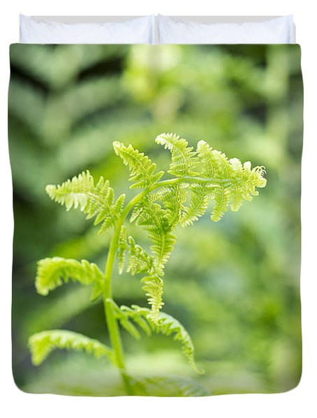 Fern Unfolding Duvet Cover