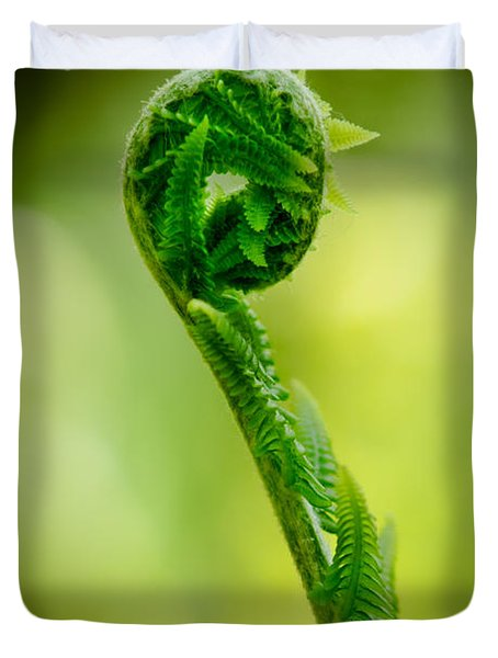Fern Unwound Duvet Cover