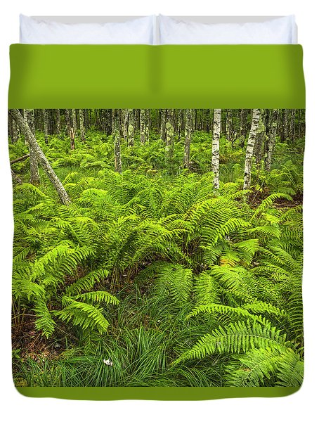 Ferns And Birch In Soft Light Duvet Cover