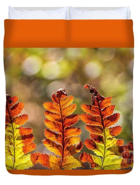 Ferns And Bokeh Forest Light Duvet Cover