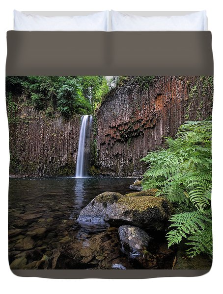 Ferns And Rocks By Abiqua Falls Duvet Cover by David Gn