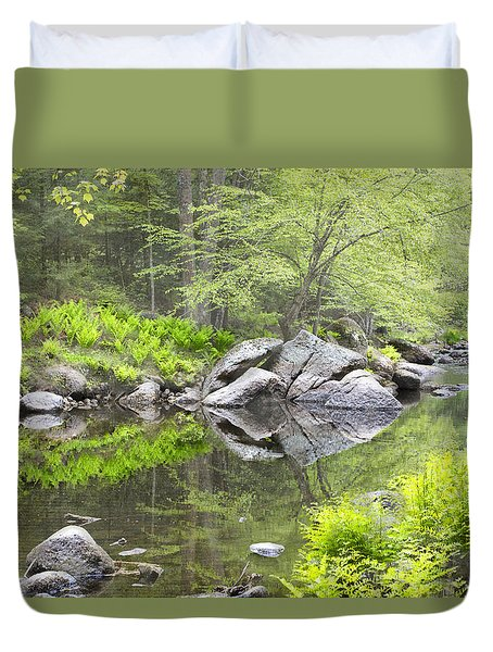 Ferns And Stream Duvet Cover by Betty  Pauwels