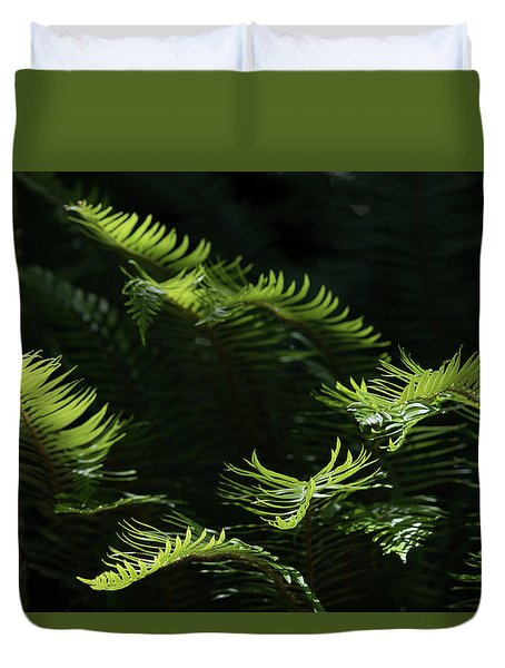 Ferns In The Forest Duvet Cover
