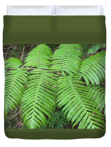 Duvet Cover featuring the photograph Ferns by Karen Nicholson