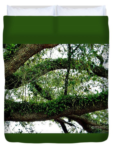 Ferns On A Tree II Duvet Cover