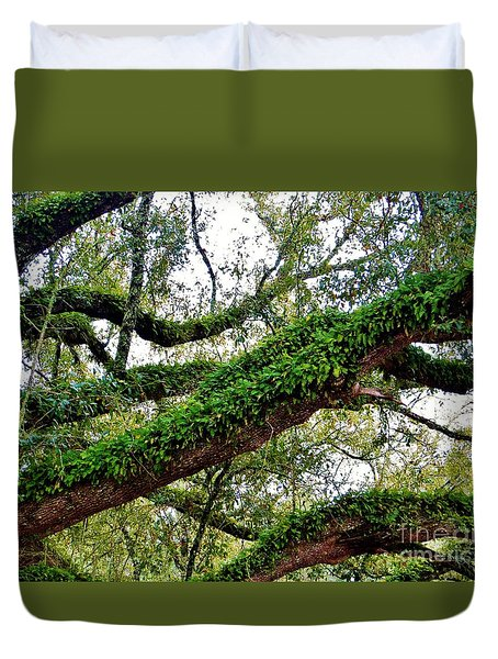 Ferns On A Tree Duvet Cover