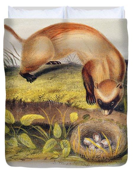 Ferret Duvet Cover