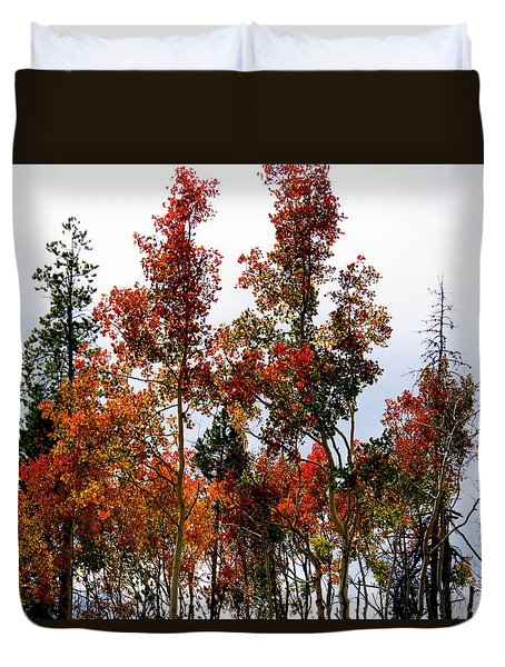 Festive Fall Duvet Cover