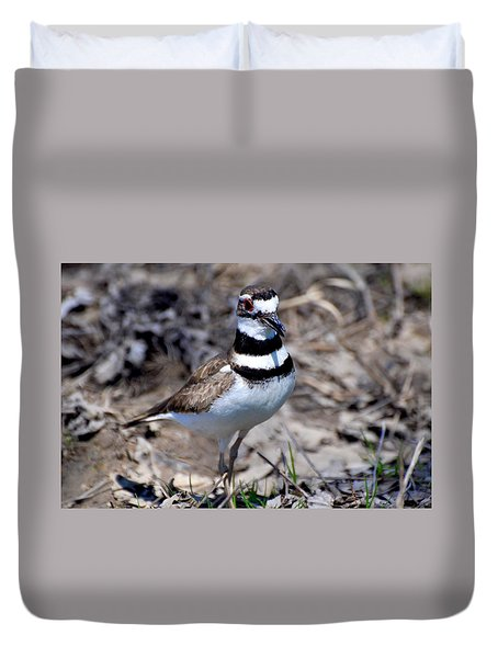 Field Killdeer Duvet Cover
