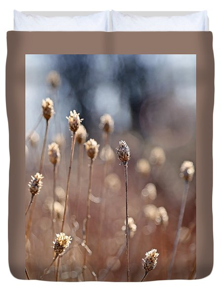 Duvet Cover featuring the photograph Field Of Dried Flowers In Earth Tones by Brooke T Ryan