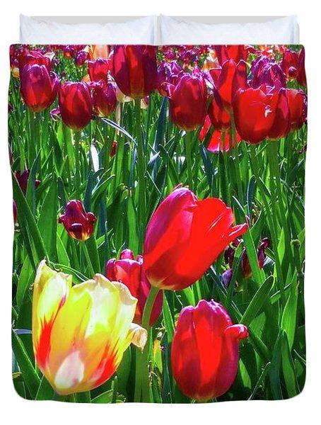 Duvet Cover featuring the photograph Tulip Garden by D Davila
