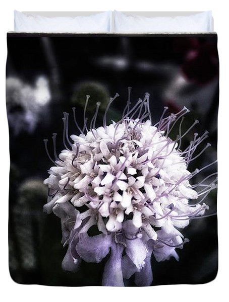 Duvet Cover featuring the photograph Field Scabious. A Member Of The by Mr Photojimsf