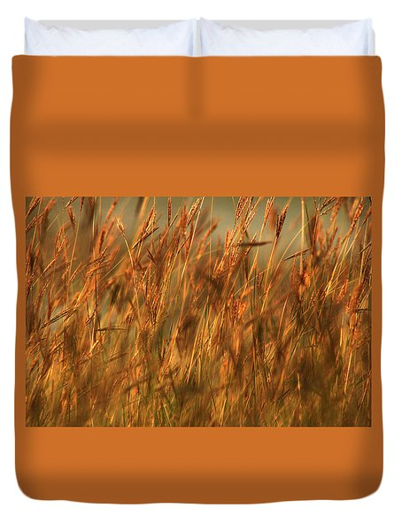 Fields Of Golden Grains Duvet Cover