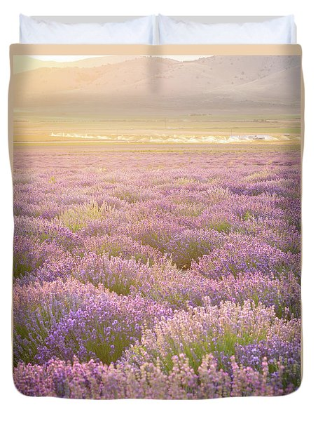 Fields Of Lavender Duvet Cover