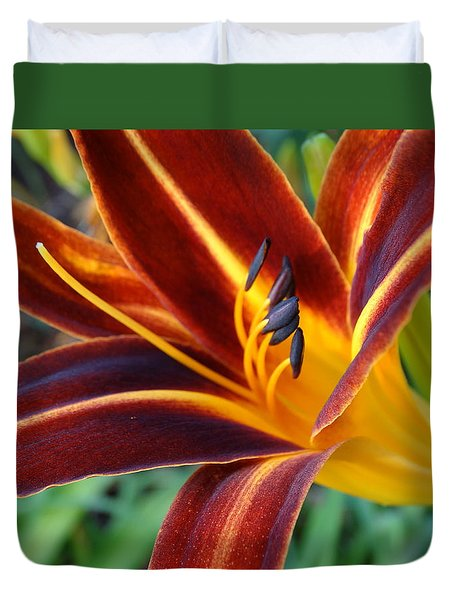 Fiery Lilies In Bloom Duvet Cover by Rebecca Overton